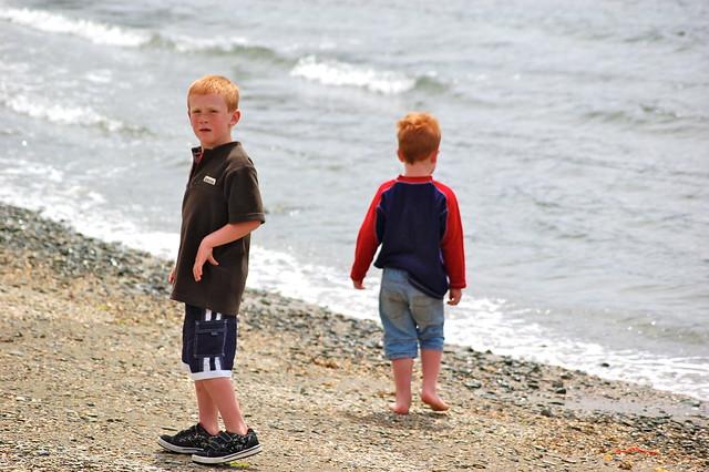 Beach of Picton