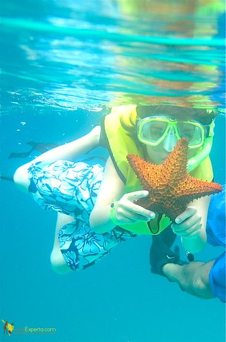 Kids Snorkeling Star Fish Roatan