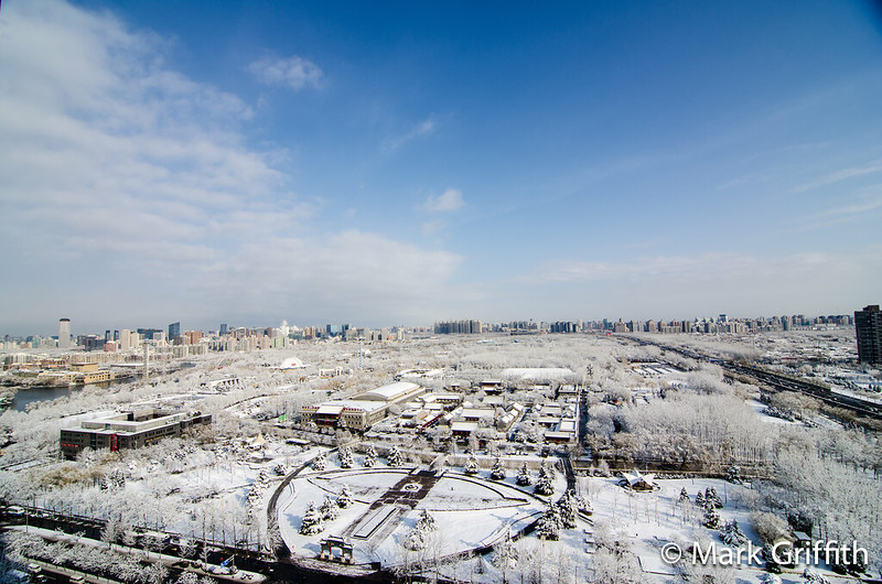 Snowy Chao Yang