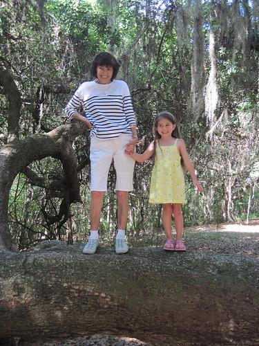 Mimi and Ashlynn on a big tree