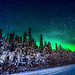 Aurora Borealis; Fairbanks Alaska