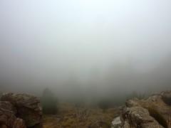 Bocca di Fumicosa : vers Frassicia et le ravin d'Aracale dans une brume complète - Le col mérite bien son nom ce jour-là !!