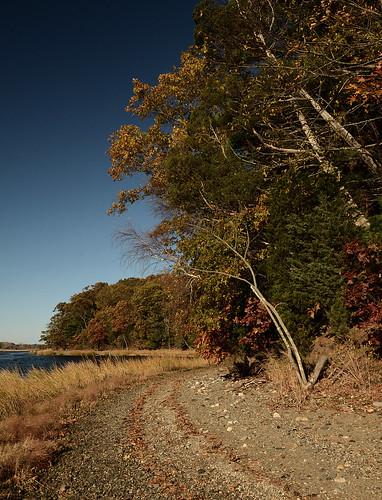 Shoreline at Goddard Park - Warwick, Rhode Island by misterfoto