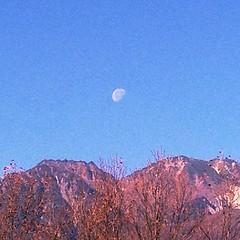 朝の月が山に掛かってきれい
