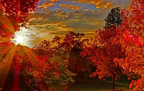 autumn sunset fall sonora fallcolor hdr tuolumne micarttttworldphotographyawards micartttt michaelchee billbirtwhistle