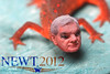 Newt Gingrich Morphed Into A Newt