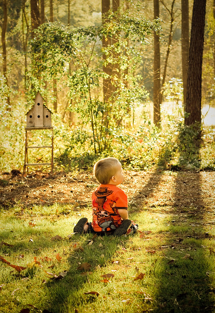 sunlight.nature.boy.toddler.sitting.trees-2
