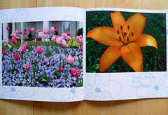 A BOOK OF FLOWERS