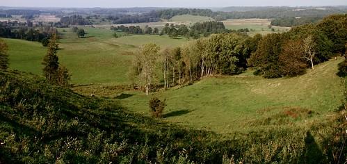 panorama view swans vejle egtved canoneos7d 1585mm larseraq larsmadfar larsmarcussen egtvedådal vejleådal