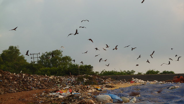 garbage in goa Goa panchayat parishad established in the year 1983 with  (grant of financial assistance to the village panchayats to deal with plastic garbage menace).