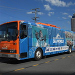 Gold Coast Tourist Shuttle