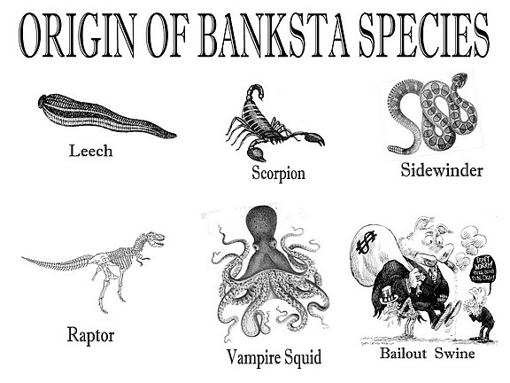 ORIGIN OF BANKSTA SPECIES