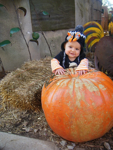 Photo Contest Entry by Kaitlyn Tabares