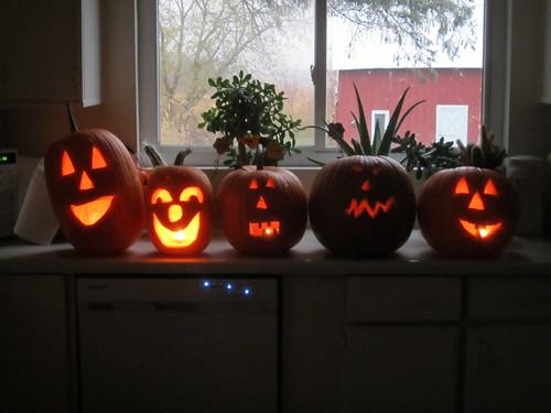 Ended up Carving 5 Pumpkins