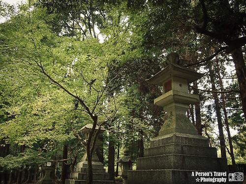 2011Kyoto_Japan_ChapTwelve_7