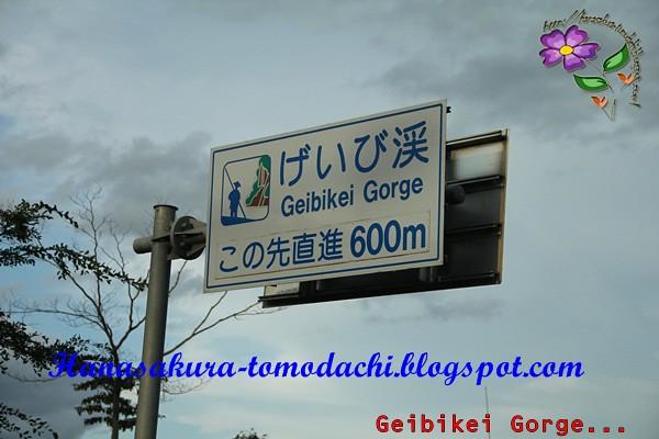 IMG_5949