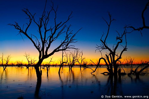 Sunset at The Lake Pamamaroo, Kinchega National Park, NSW, Australia