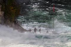 Rhine Falls (2)