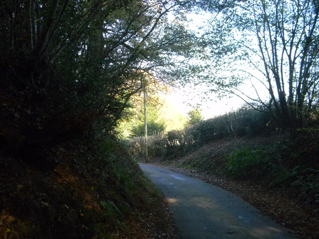 Country Lane Buxted Circular