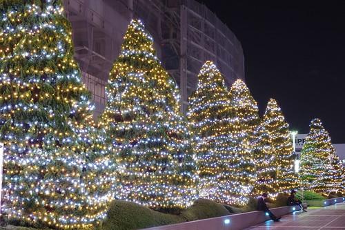 新宿テラスシティ イルミネーション2011-12 Shinjuku Terrace City by ELCAN KE-7A