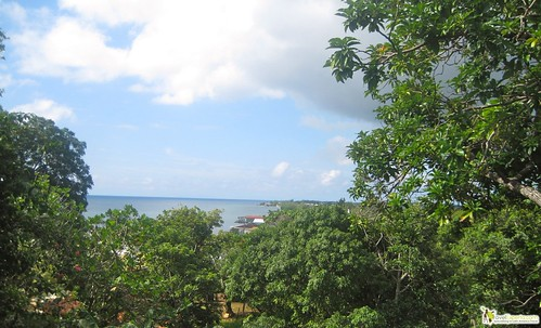 view of utila - diving - honduras