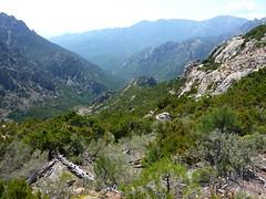Vers l'arrivée au GR20 à Bocca di Monte Bracciutu : vallées du Peralzone et du Mela jusqu'au Cavu