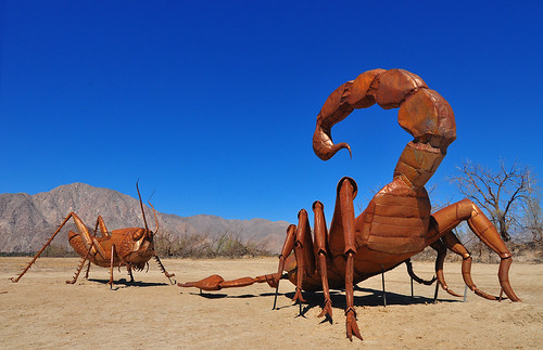 The Cricket Versus the Scorpion