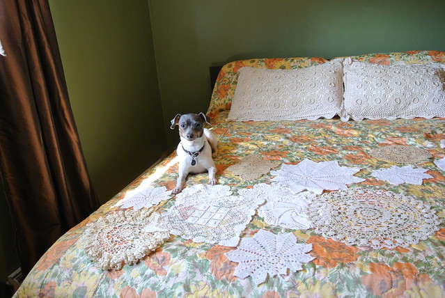DIY: Doily Wall Art