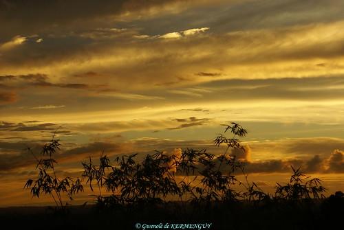 light sunset sun sunlight clouds de soleil marin ngc asie nuages bambou lumières artiste gwenole papouasie gwenolé kermenguy coucherdesoleilasiatique sorongpapouasieoccidentale gwenolédekermenguy dekermenguy bygwenolé gwenolémarinartiste bygwenolédekermenguy gwenoledekermenguy bygwenole pargwenolé pargwenolédekermenguy pourleplaisirdesyeux