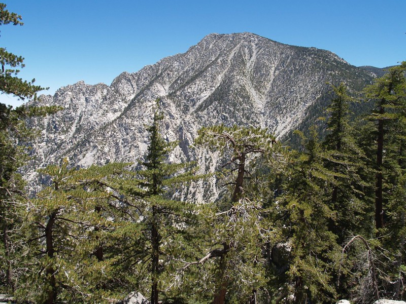 San Jacinto from the Fuller Ridge Trail