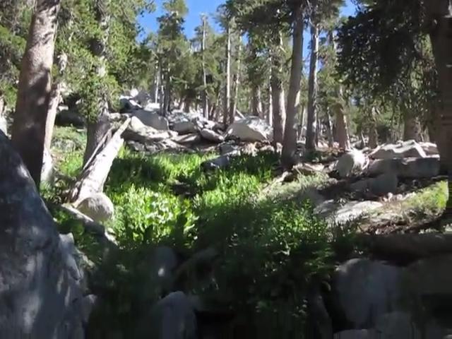 0307 Deer Springs Trail Stream