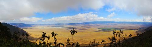 africa parco tanzania view safari ngorongoro crater cratere ngorongoroconservationarea