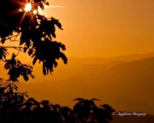 orange usa mountains nature leaves sunrise outdoors tn flare silhoutte townsend
