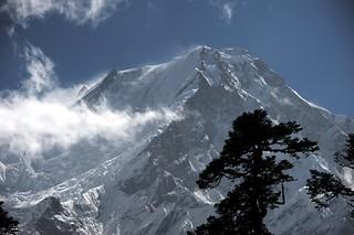 Manaslu from Bhimtang