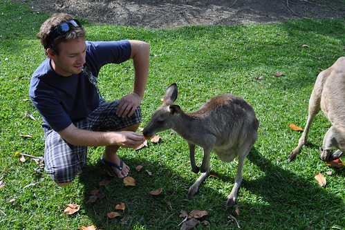 Jeff befriending a wallaby