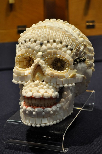 Philadelphia shell show 2011 flickr photo sharing for Animals made out of seashells