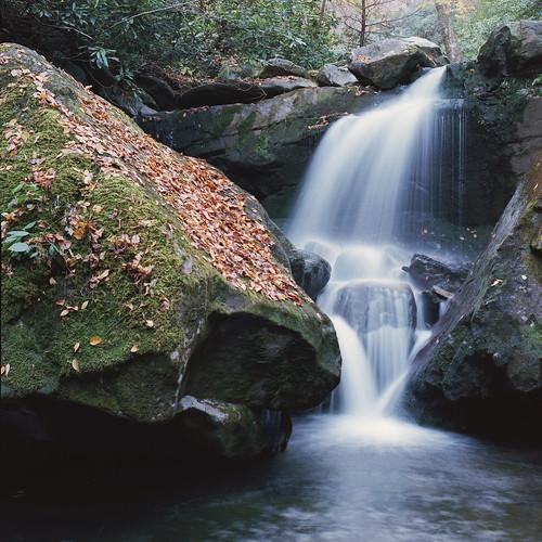 leaves waterfall rocks 120film bronica gatlinburg grottofalls kodakektar100
