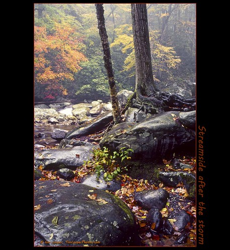 trees orange water river landscape us nationalpark rocks flickr tennessee fallfoliage northamerica timcooper smokymtnnp