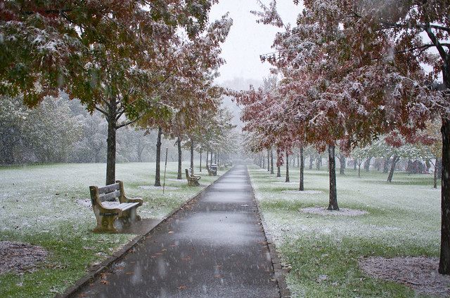 Snow falls on the Cherry Esplanade during Ghouls & Gourds 2011. Photo by Mike Ratliff.