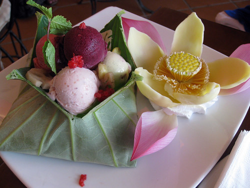 Ice cream lotus