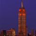 "Empire State Building in Orange & White for Food Bank for NYC's ""Go Orange – Fill the Plate"""