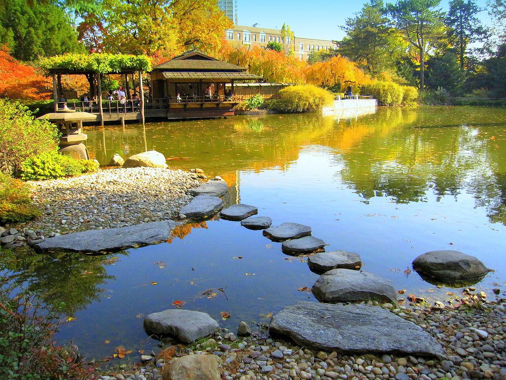 Reflection japanese pond flickr photo sharing for Your pond japan