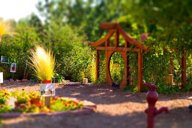 Tiny japanese garden house flickr photo sharing for Little japanese garden