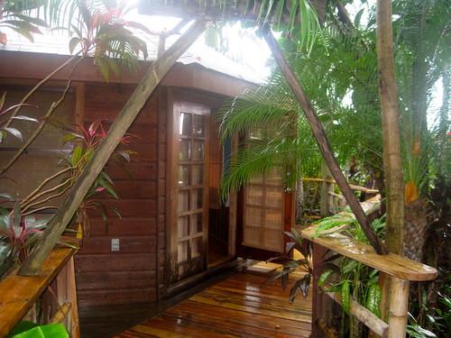 cabin eco lodge roatan honduras