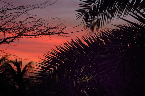 sunset explore ©allrightsreserved