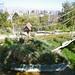 Santiago Zoo, Santiago