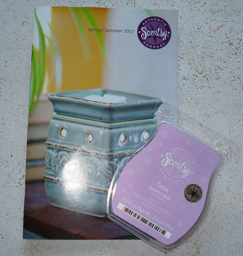 Scentsy Cerise