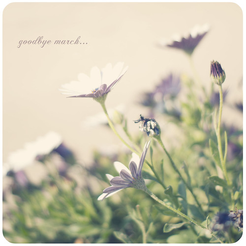 Goodbye March... by Vanina Vila {Photography}