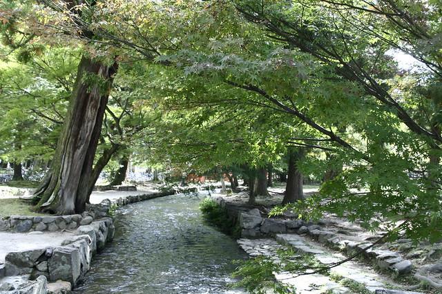 鐵馬遊京都