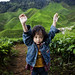 Children Photography | Hands Up | Cameron Highlands